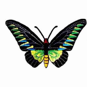 Butterflies - Rajah Brooke's Birdwing Iron On Butterfly Patch Ap