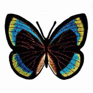 Butterflies - Teal, Black, Yellow Iron On Butterfly Patch Appliq