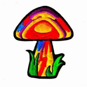 Magic Mushroom Iron On Patch Applique