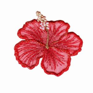 Red-Hibiscus-flower-patch