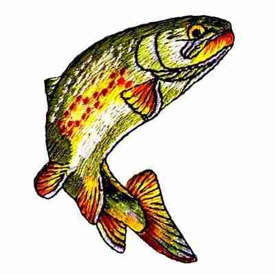Fish - Golden Trout Iron On Fish Patch Applique