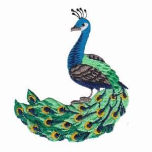 Small Peacock Iron On Avian Applique