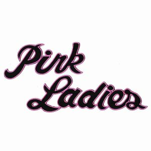 Pink Ladies Iron On Patch | LaughingLizards.com