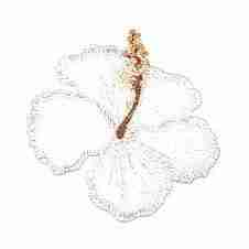 Large-White-Hibiscus-Patch-391-200